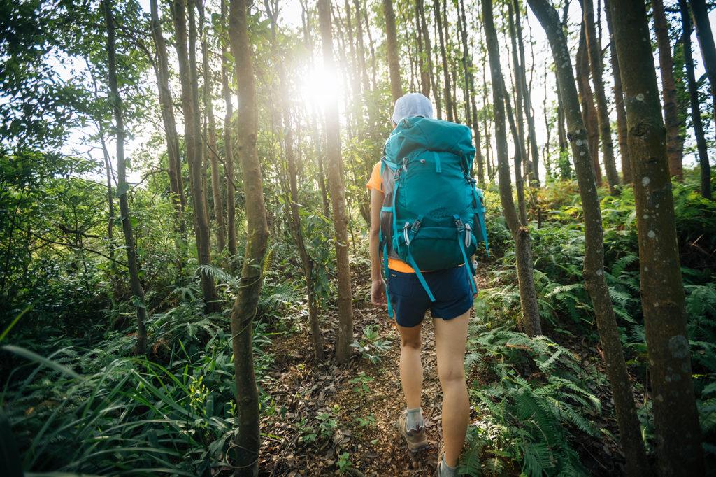 woman-hiker-in-sunrise-tropical-rainforest-4KVS9ET web